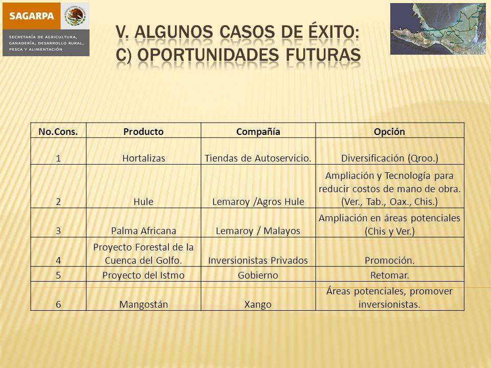 V. Algunos casos de éxito: c) Oportunidades Futuras
