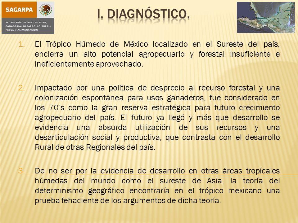 I. Diagnóstico.