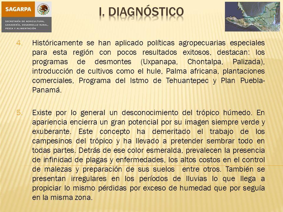 I. Diagnóstico