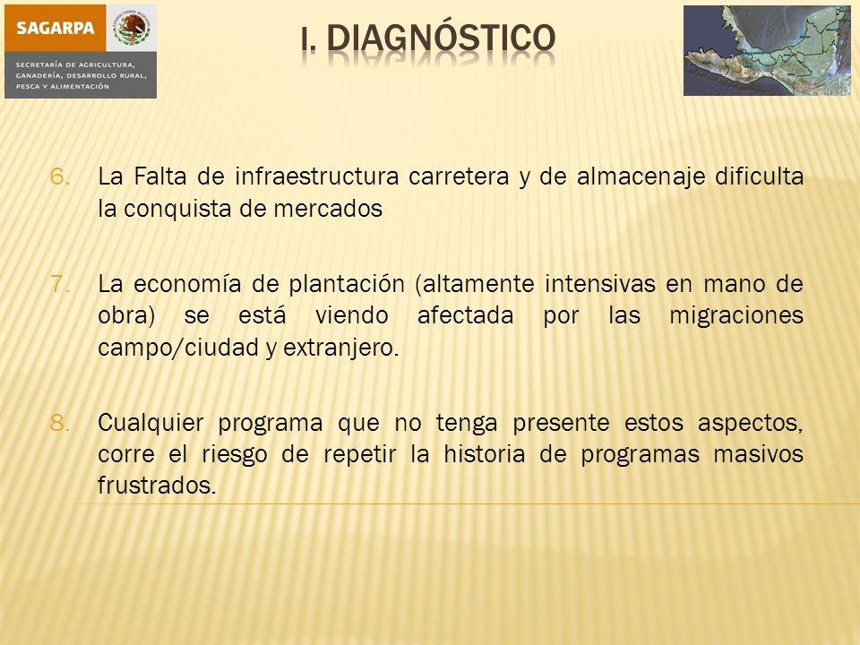 I. Diagnóstico La Falta de infraestructura carretera y de almacenaje dificulta la conquista de mercados.