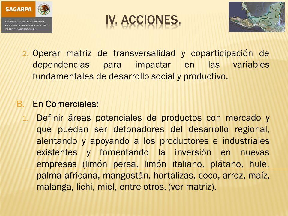 IV. Acciones.