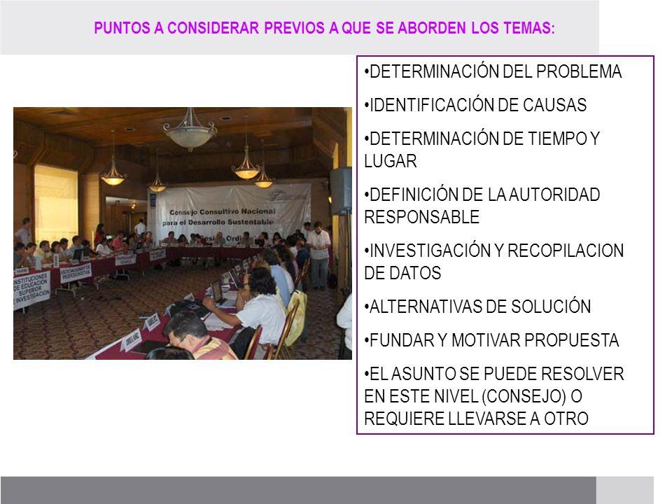DETERMINACIÓN DEL PROBLEMA IDENTIFICACIÓN DE CAUSAS