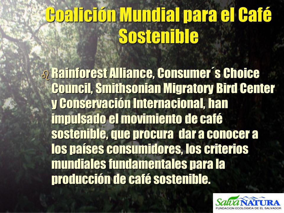 Coalición Mundial para el Café Sostenible