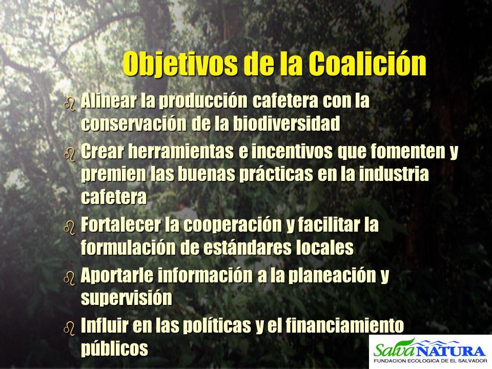 Objetivos de la Coalición