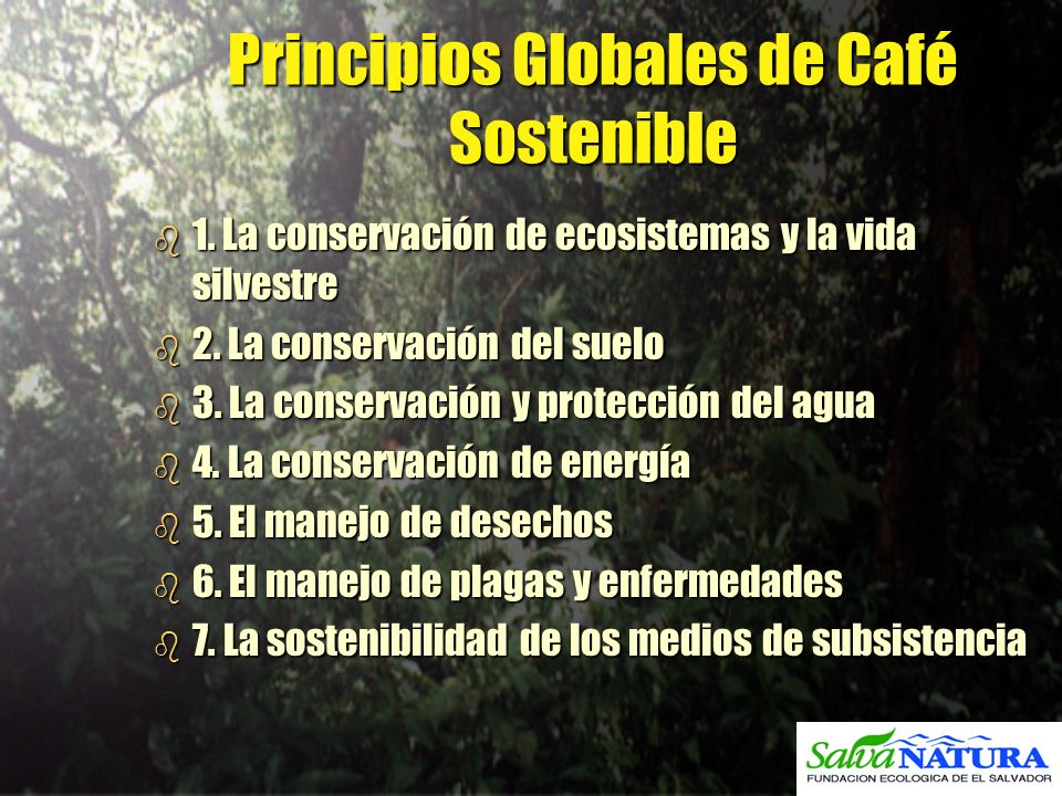 Principios Globales de Café Sostenible