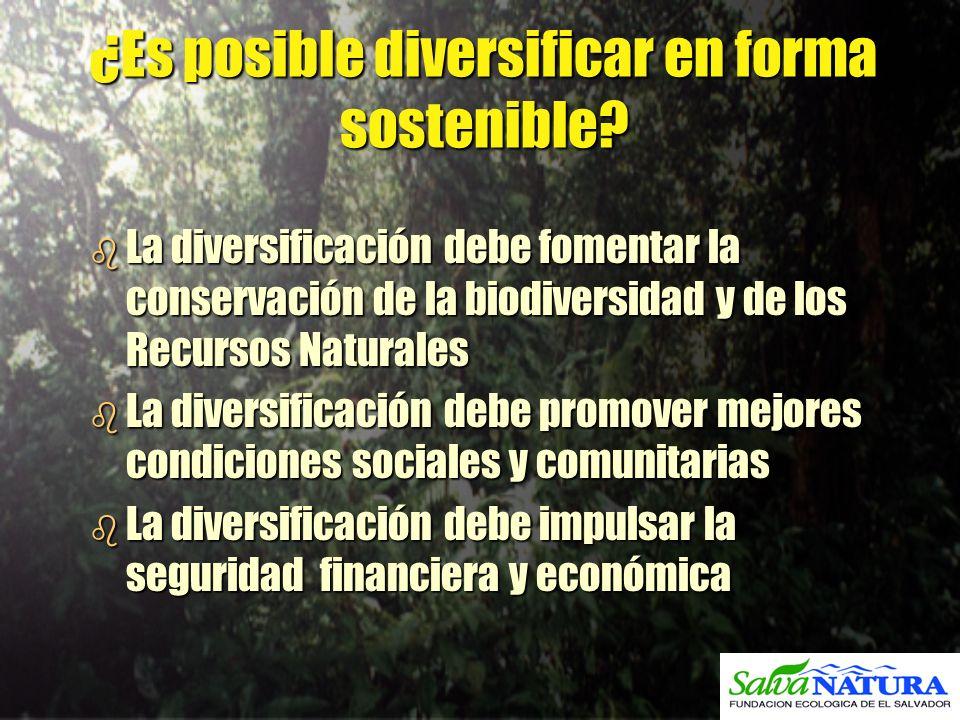 ¿Es posible diversificar en forma sostenible