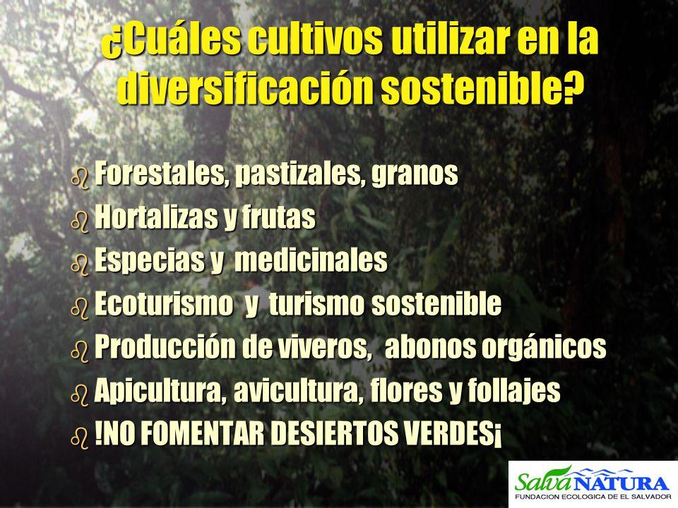 ¿Cuáles cultivos utilizar en la diversificación sostenible