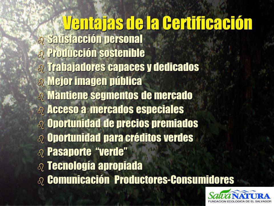 Ventajas de la Certificación