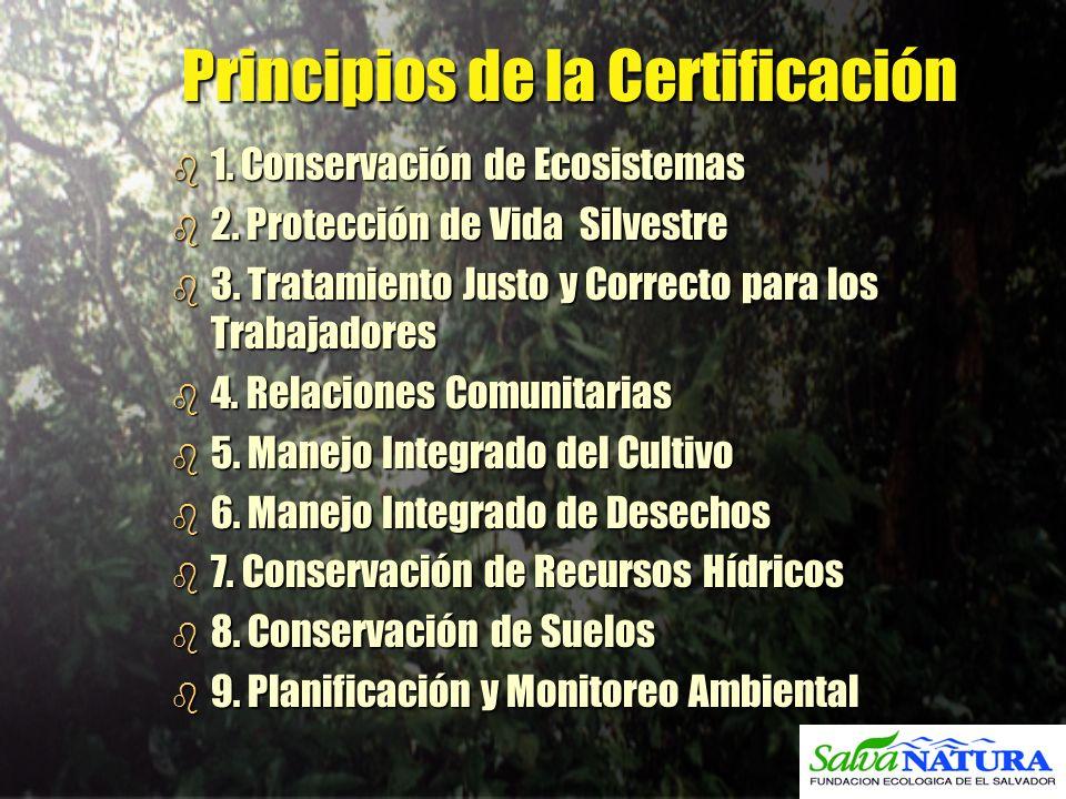 Principios de la Certificación
