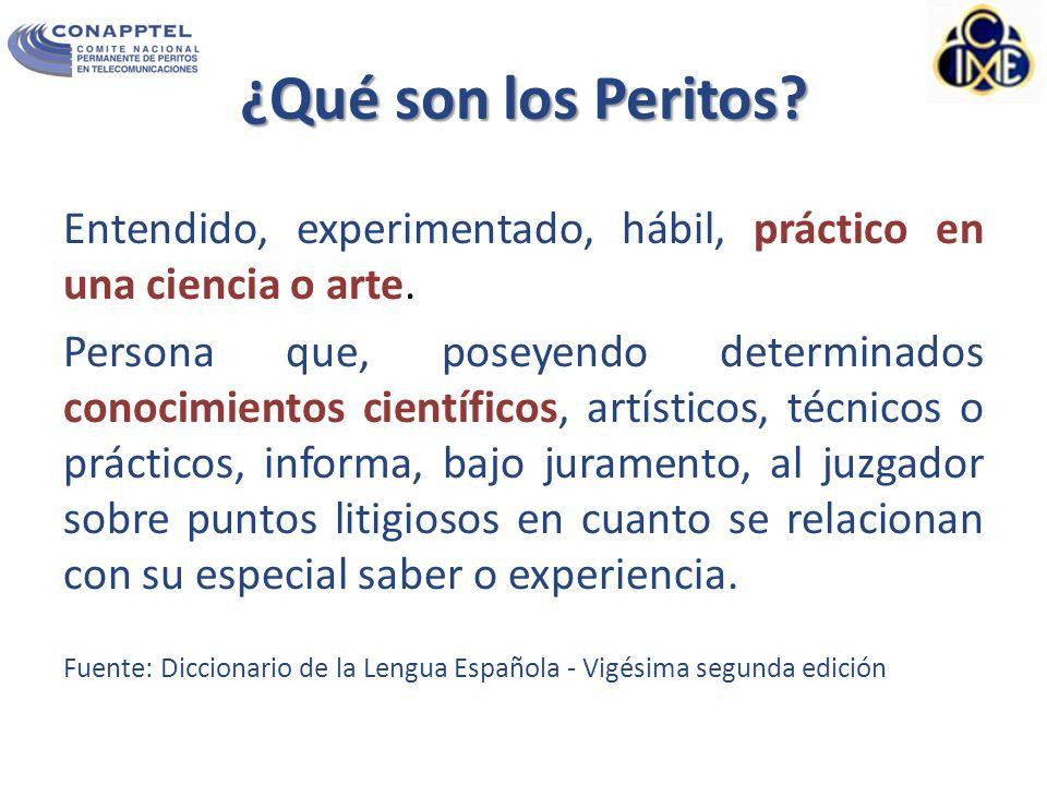 ¿Qué son los Peritos Entendido, experimentado, hábil, práctico en una ciencia o arte.
