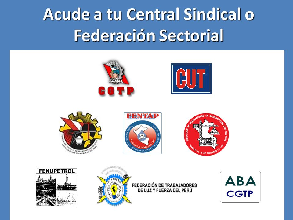 Acude a tu Central Sindical o Federación Sectorial
