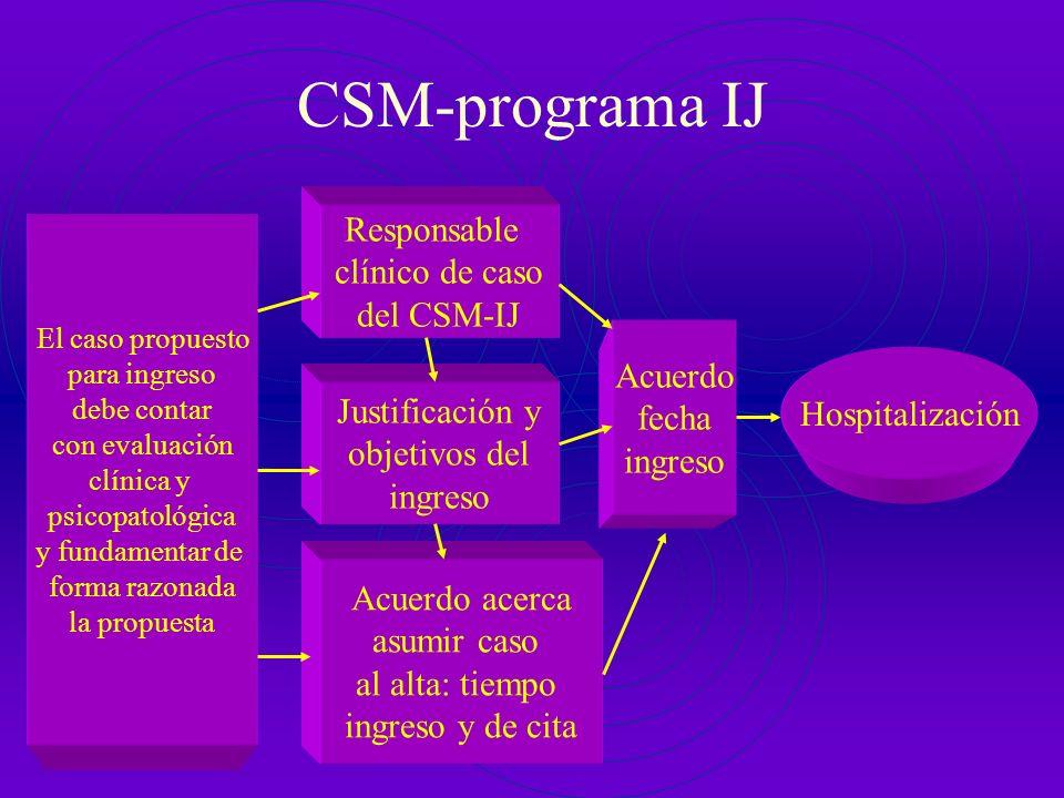 CSM-programa IJ Responsable clínico de caso del CSM-IJ Acuerdo fecha