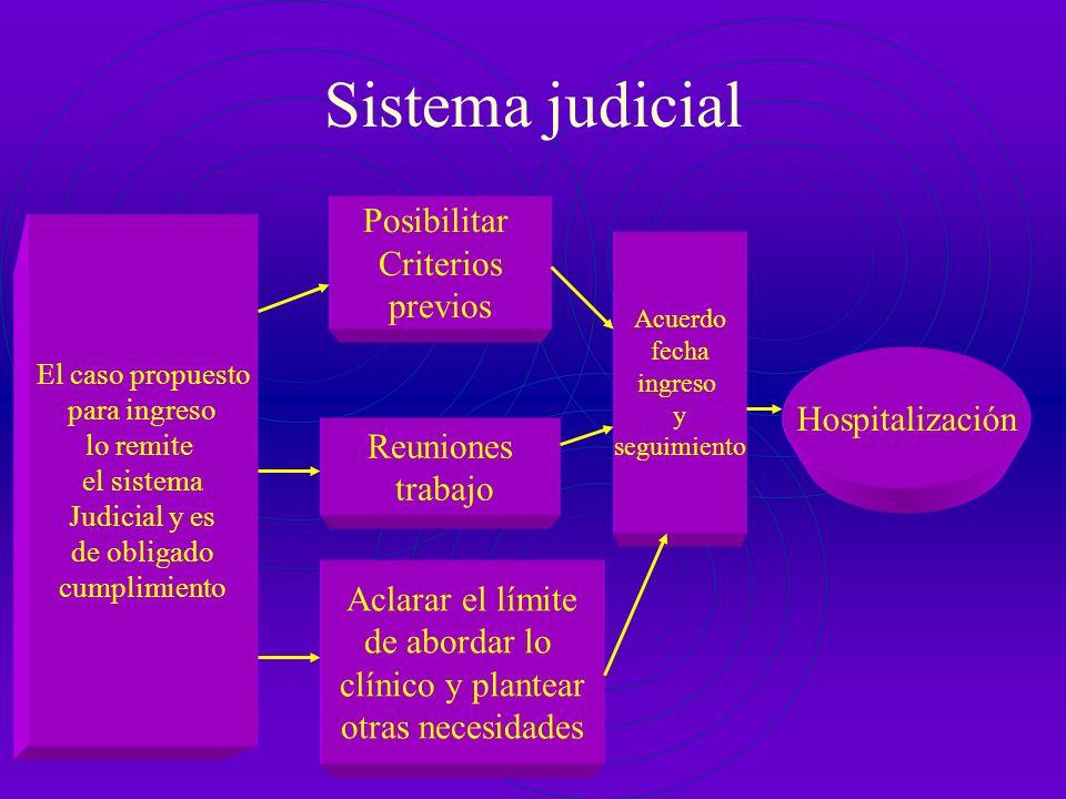 Sistema judicial Posibilitar Criterios previos Hospitalización
