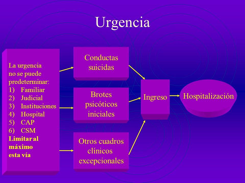 Urgencia Conductas suicidas Ingreso Hospitalización Brotes psicóticos