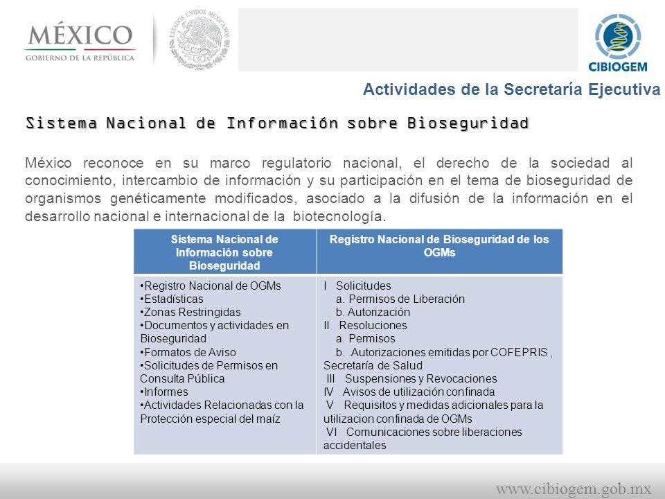Actividades de la Secretaría Ejecutiva