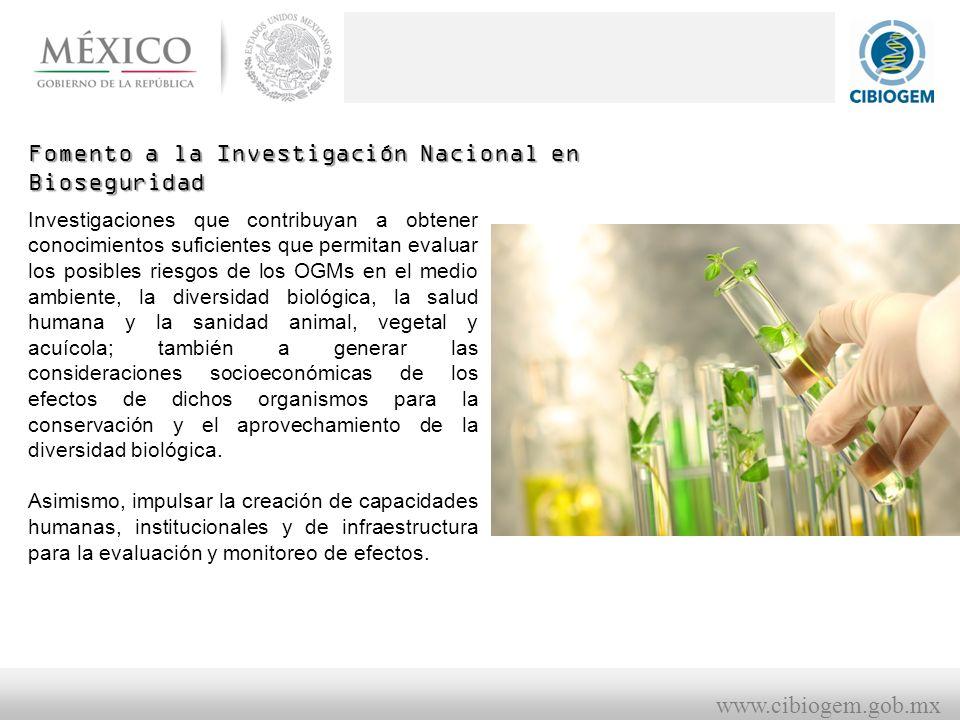 Fomento a la Investigación Nacional en Bioseguridad