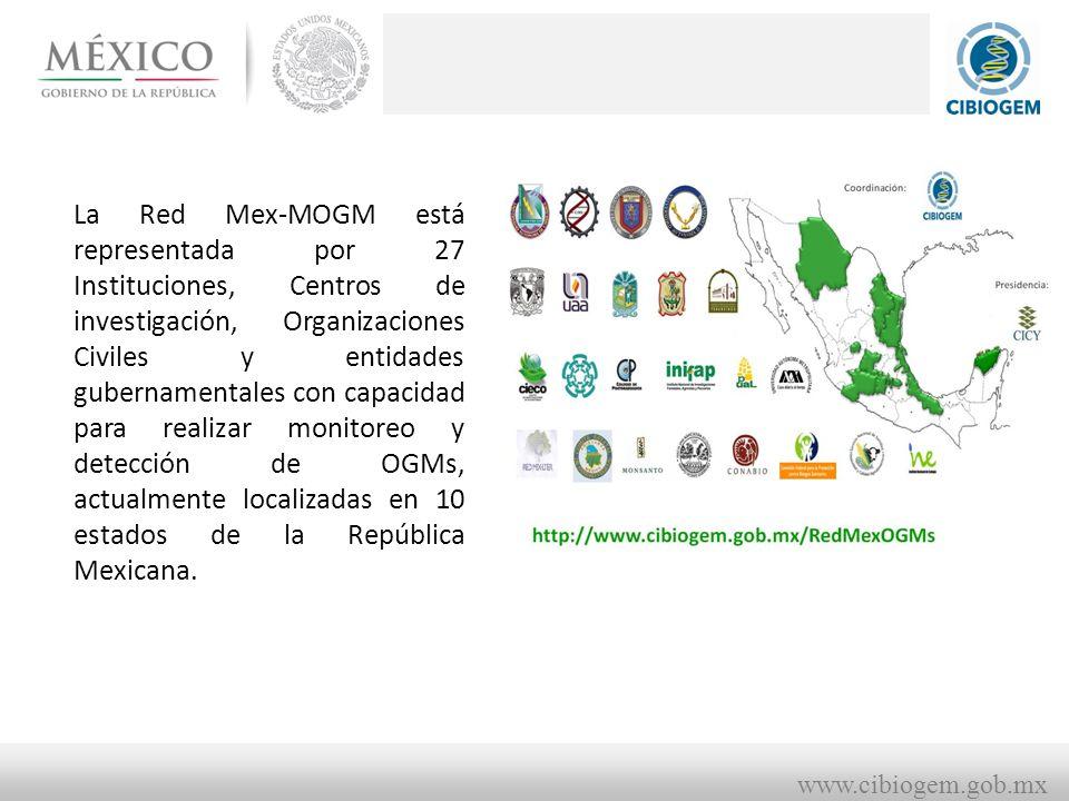 La Red Mex-MOGM está representada por 27 Instituciones, Centros de investigación, Organizaciones Civiles y entidades gubernamentales con capacidad para realizar monitoreo y detección de OGMs, actualmente localizadas en 10 estados de la República Mexicana.