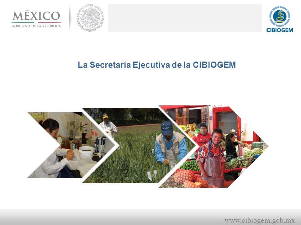 La Secretaría Ejecutiva de la CIBIOGEM