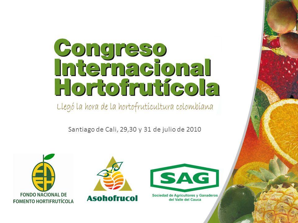 Santiago de Cali, 29,30 y 31 de julio de 2010