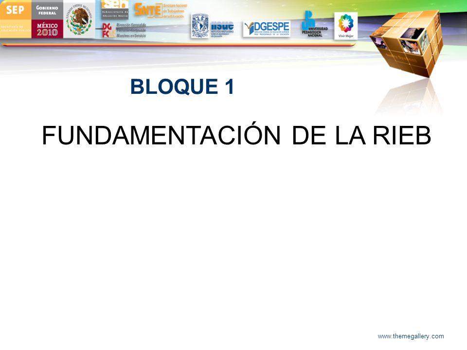 FUNDAMENTACIÓN DE LA RIEB