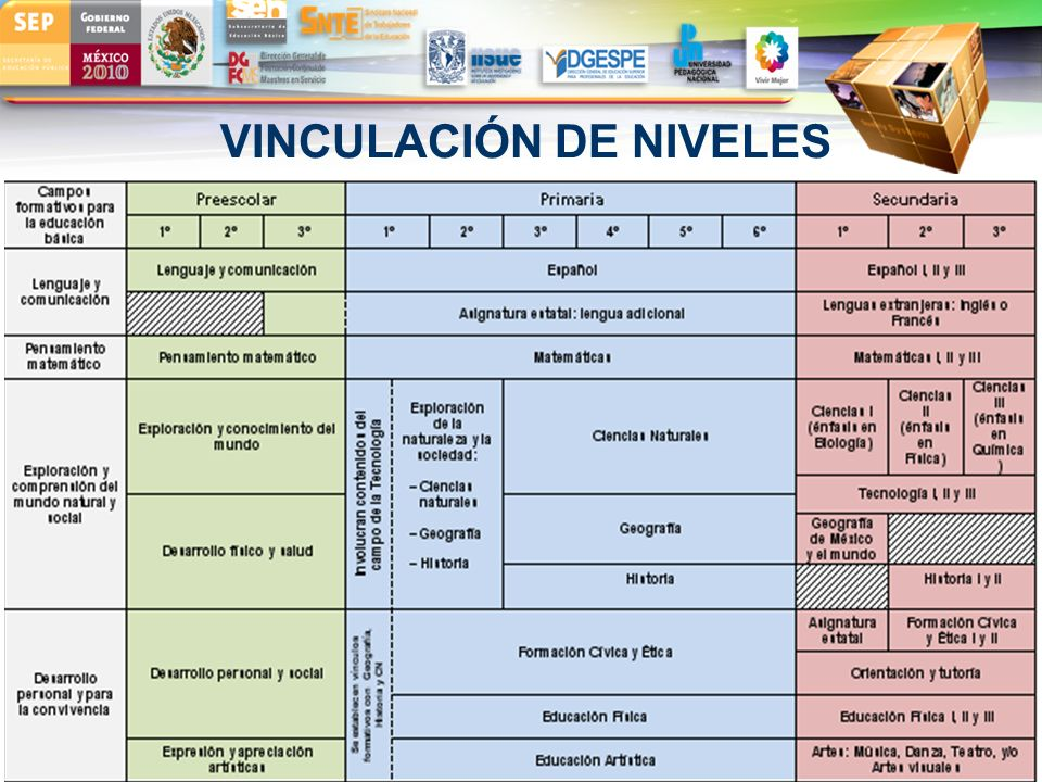VINCULACIÓN DE NIVELES