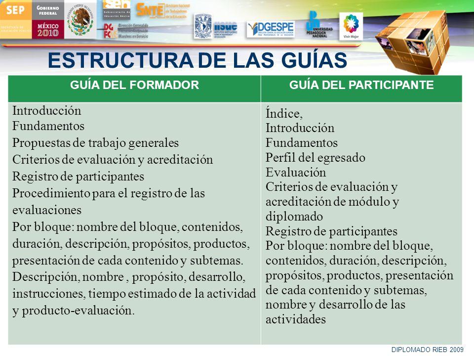 ESTRUCTURA DE LAS GUÍAS