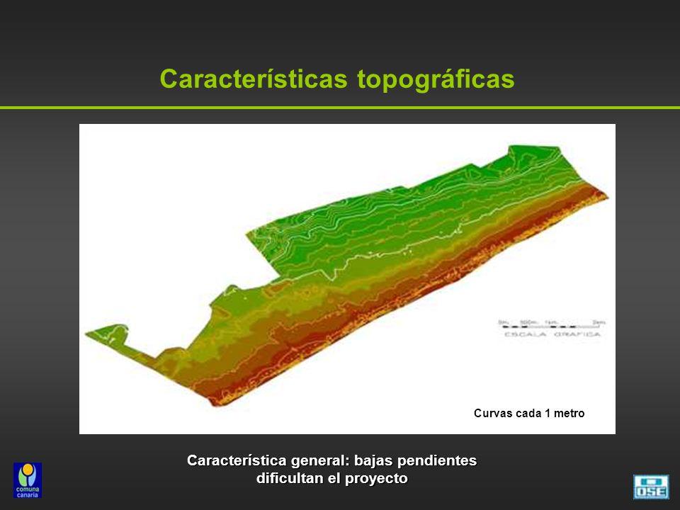 Características topográficas