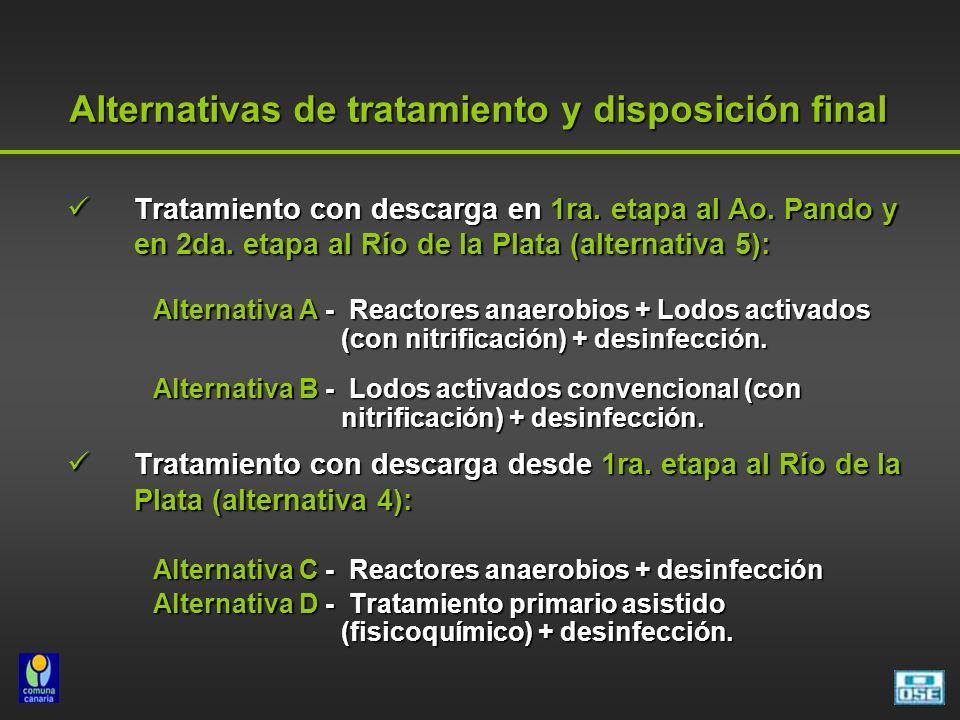 Alternativas de tratamiento y disposición final