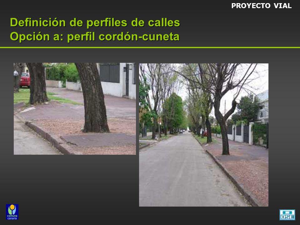 Definición de perfiles de calles Opción a: perfil cordón-cuneta