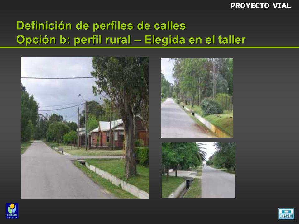 PROYECTO VIAL Definición de perfiles de calles Opción b: perfil rural – Elegida en el taller