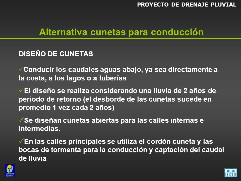 PROYECTO DE DRENAJE PLUVIAL Alternativa cunetas para conducción