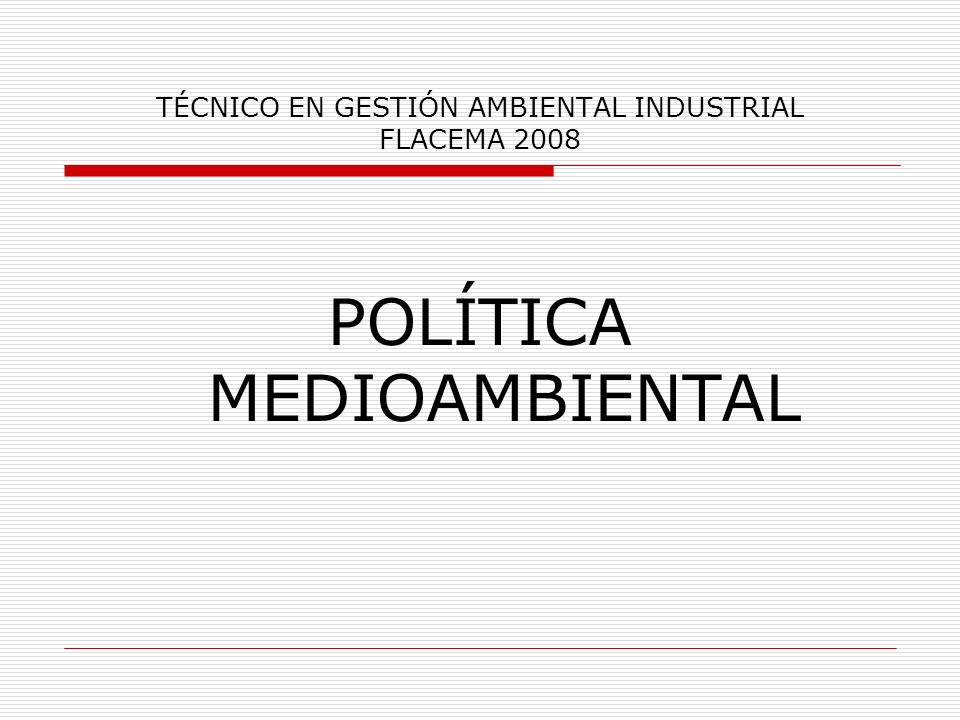 TÉCNICO EN GESTIÓN AMBIENTAL INDUSTRIAL FLACEMA 2008