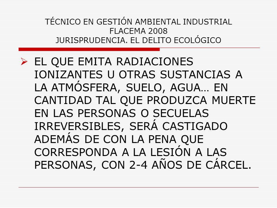 TÉCNICO EN GESTIÓN AMBIENTAL INDUSTRIAL FLACEMA 2008 JURISPRUDENCIA