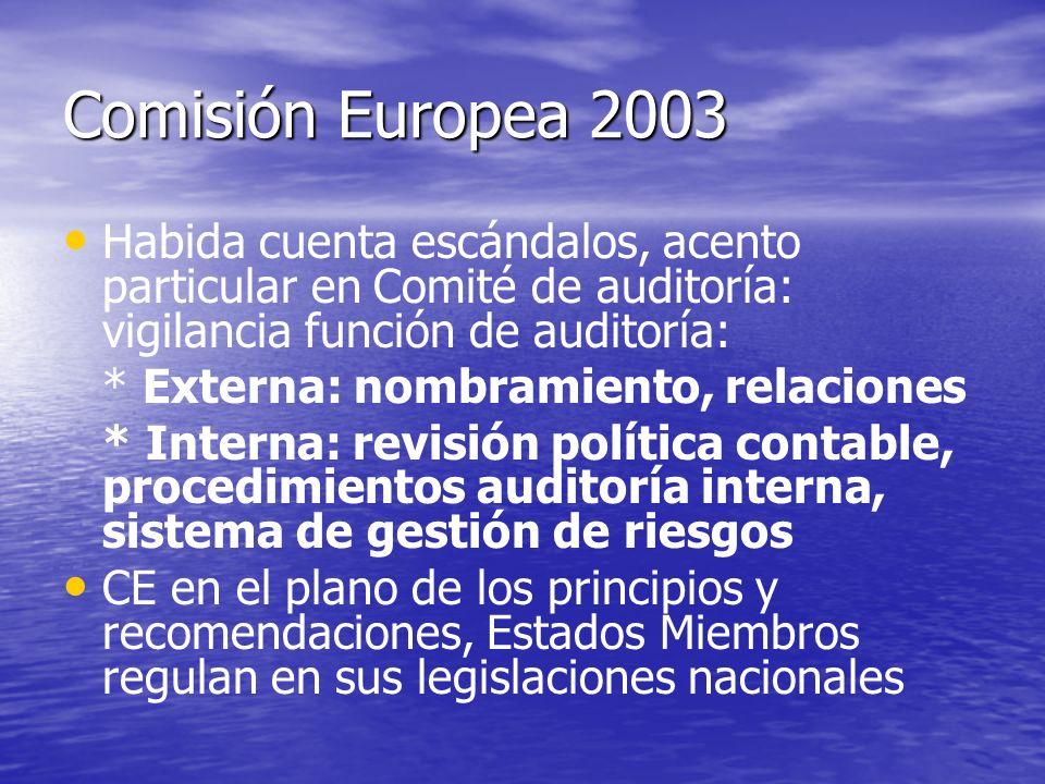 Comisión Europea 2003 Habida cuenta escándalos, acento particular en Comité de auditoría: vigilancia función de auditoría:
