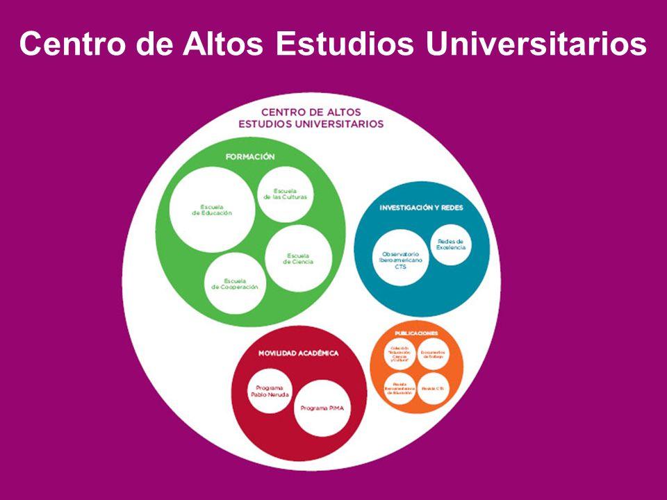 Centro de Altos Estudios Universitarios