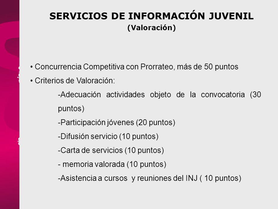 SERVICIOS DE INFORMACIÓN JUVENIL (Valoración)