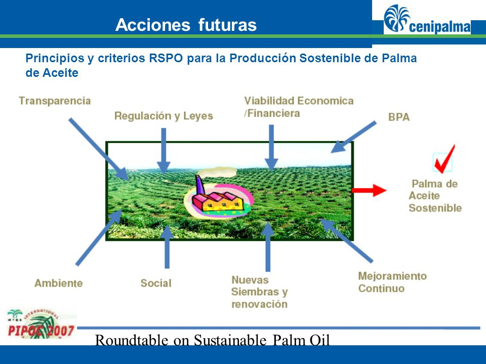 Acciones futuras Roundtable on Sustainable Palm Oil