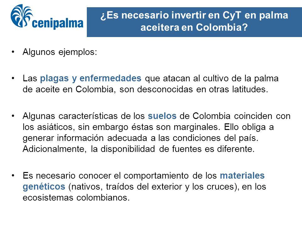 ¿Es necesario invertir en CyT en palma aceitera en Colombia