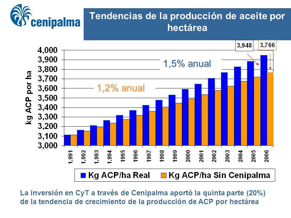 Tendencias de la producción de aceite por hectárea