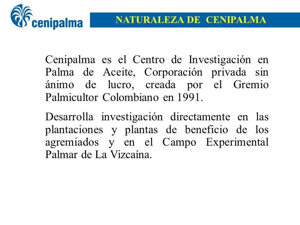 NATURALEZA DE CENIPALMA