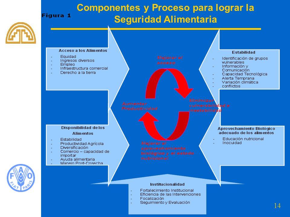 Componentes y Proceso para lograr la Seguridad Alimentaria