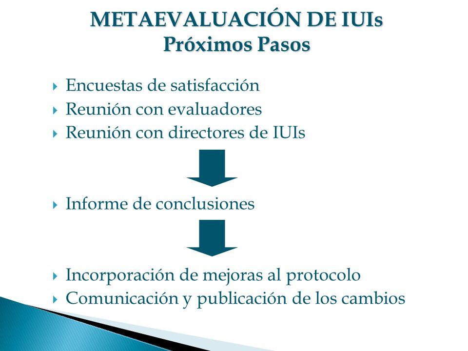 METAEVALUACIÓN DE IUIs Próximos Pasos
