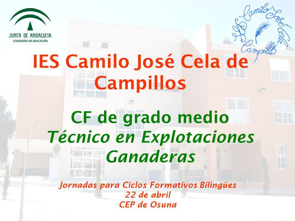IES Camilo José Cela de Campillos