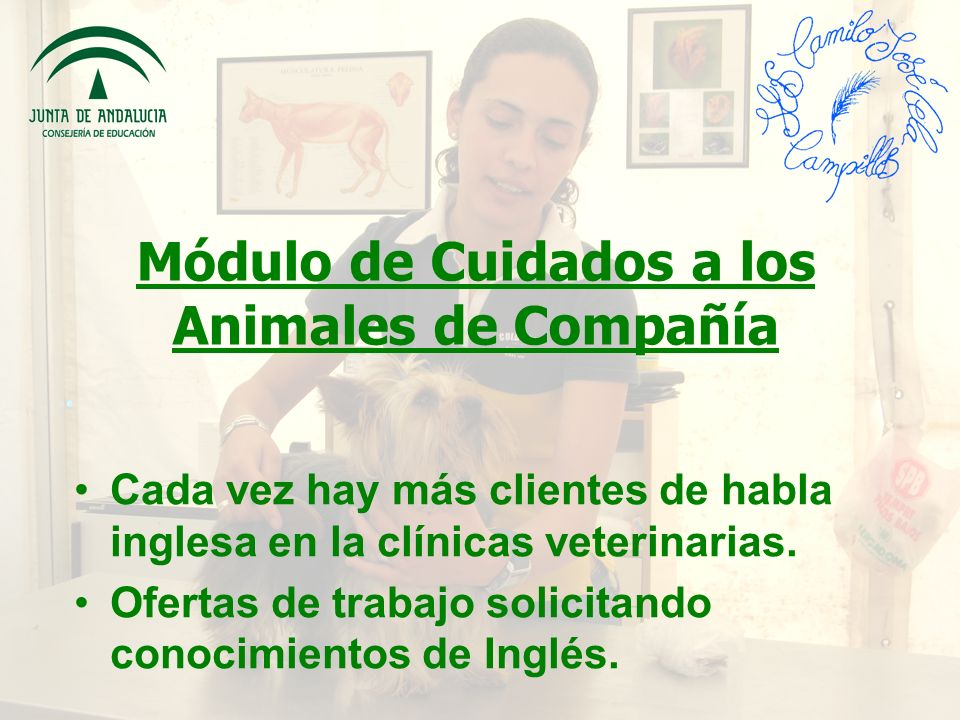 Módulo de Cuidados a los Animales de Compañía