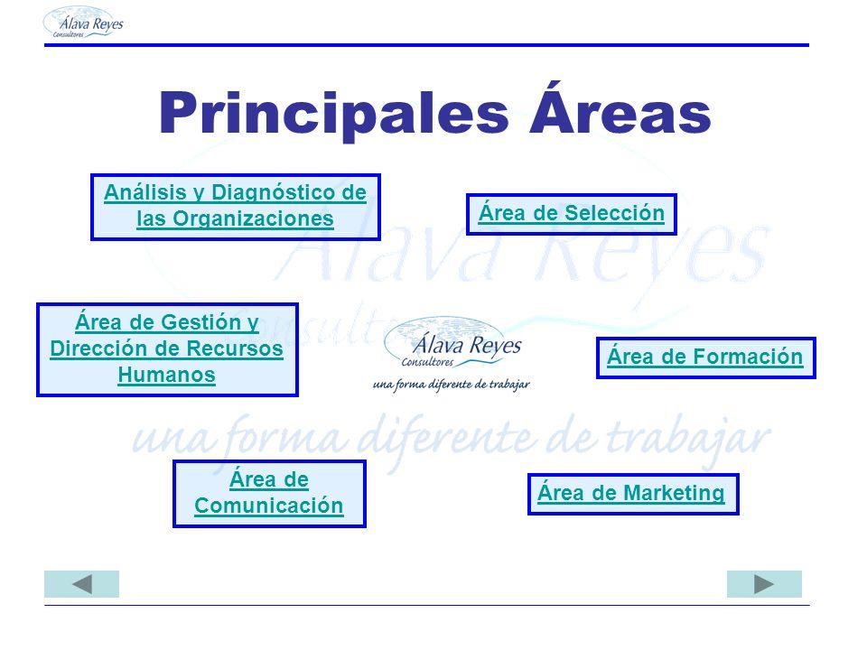 Principales Áreas Análisis y Diagnóstico de las Organizaciones