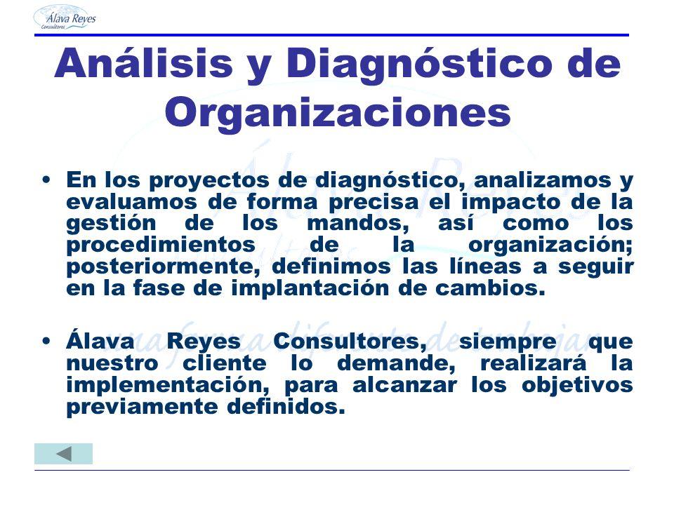 Análisis y Diagnóstico de Organizaciones