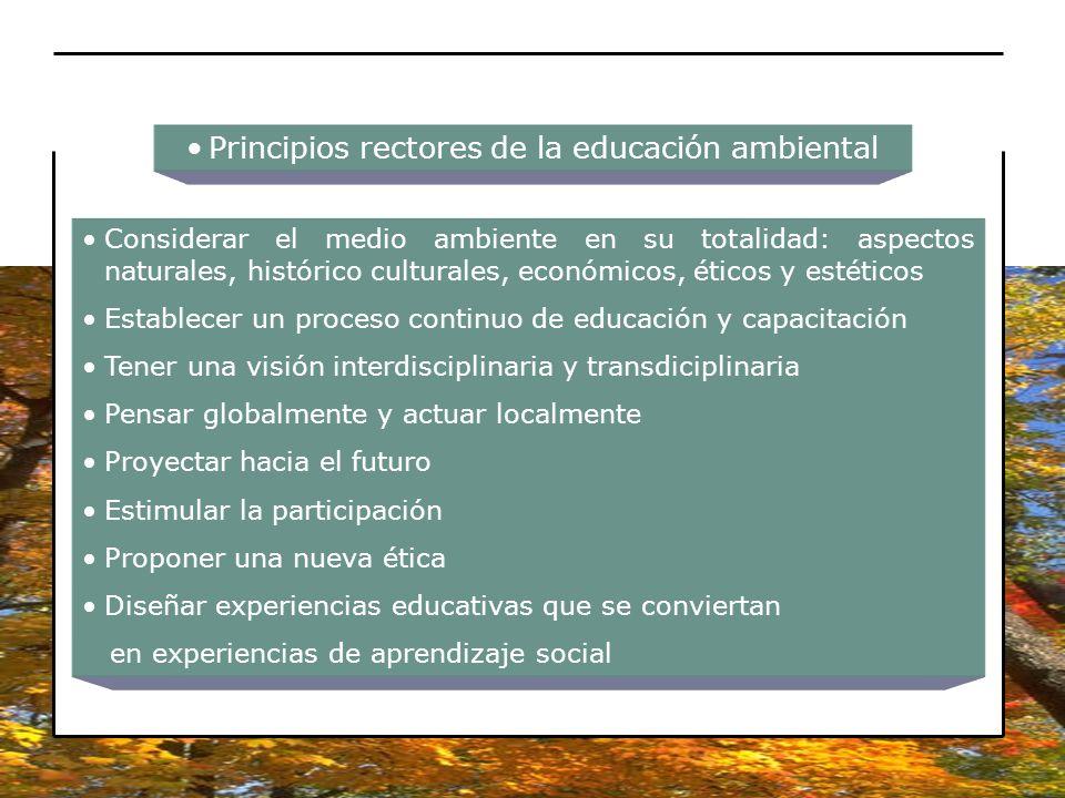 Principios rectores de la educación ambiental