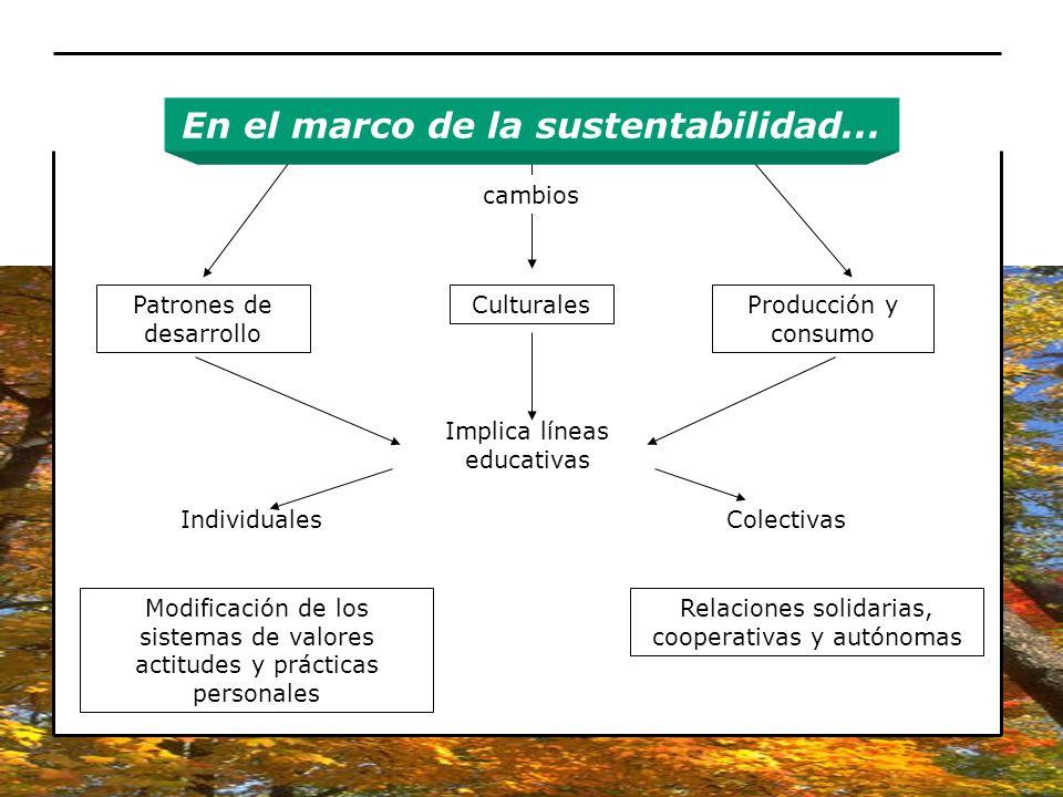 En el marco de la sustentabilidad...
