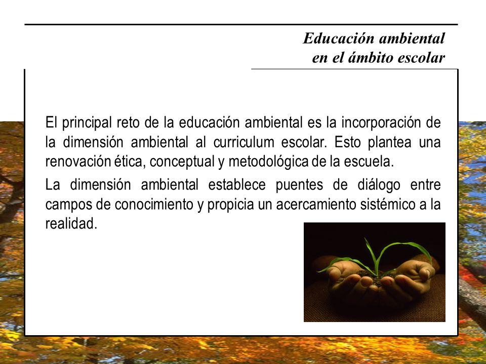 Educación ambiental en el ámbito escolar