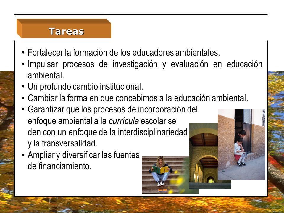 Tareas Fortalecer la formación de los educadores ambientales. Impulsar procesos de investigación y evaluación en educación ambiental.